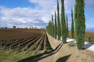 Tuscany Cycling trip