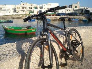 Self-Guided Trekking Bike
