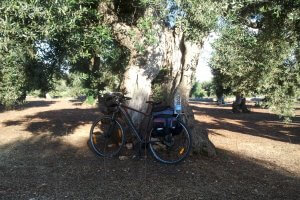 Self guided cycling Trip Puglia Coast