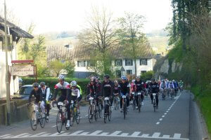 Amstel gold cycling race