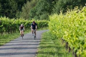Bike Hotel Dei Chiostri
