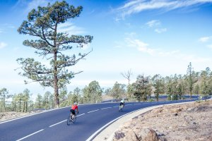 Road cycling Tours Tenerife