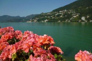 Self Guided road cycling holiday Lake Como