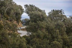 Girona Bike Tours
