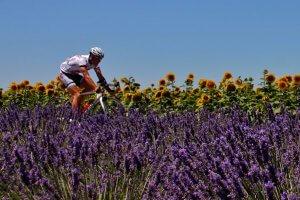 Fahrradverleih Perugia